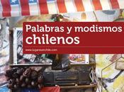 Diccionario palabras modismos chilenos