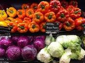 ¿sabemos realmente como comer para mejorar salud?
