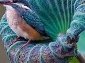 mensajes espirituales colibríes están tratando mandarte