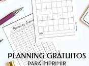 Planning Gratuitos Para Imprimir