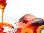 ¿Por aceite palma malo para ambiente?