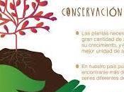 mundial conservación suelo julio