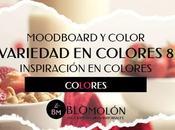 Variedad Color MoodBoard