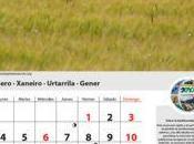 Calendario medioambiental 2010