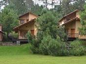 Bosque Escondido, cabañas Mazamitla
