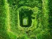 Túnel amor (Ucrania): lugar leyenda.
