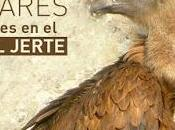 lugares para aves Valle Jerte