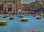 Plan viaje Europa barato: vuelo Amsterdam Visa Check