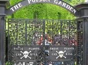 Poison Garden: jardín sólo plantas venenosas.