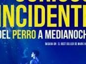 Curioso Incidente Perro Medianoche, Sublimación Inocencia.