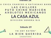 Indyspensable Madrid 2018: Casa Azul, Columpio Asesino, Crepúsculo, Bien Querida, Joana Serrat, Chillers, Axolotes Mexicanos...