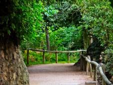 Conoce bucólico paseo junto Eresma ciudad Segovia