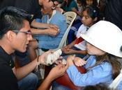CONVOCATORIA: Voluntariado MinerLima2018. Inscribete