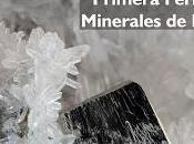 Sociedad Geológica Perú (SGP) confirma apoyo MinerLima2018