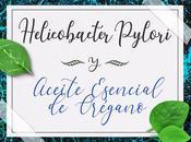 Helicobacter pylori aceite esencial orégano