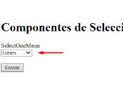 Como usar h:selectOneMenu Combo selección