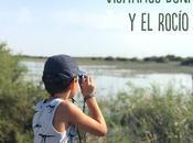 Visita Doñana Rocío