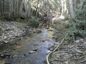 Vallosera, ¿río arroyo