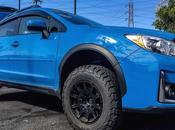 Elegant Subaru Crosstrek Bumper Guard