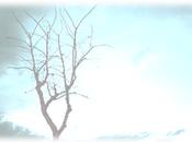 Gestionando cambio blog ...de inquietudes...de metas futuro