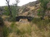 puente Vega