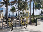 Pompano Beach Park Atlantis