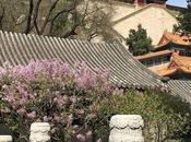 Guía viaje: China Datong Xian guide Xian.