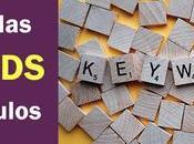 ¿Estás aprovechando palabras clave posts?