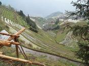 Guía viaje: China Longsheng Guilin guide