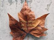 Trasueños otoño