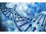 Autismo tiene relacion mutación SETD5