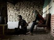 Gohar Dashti, guerra tanques como electrodomésticos