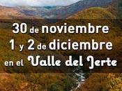 Arte, teatro repostería este finde Valle Jerte noviembre diciembre)