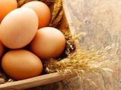 Dieta huevo para bajar peso