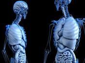 Enfermedad Crohn cómo puedes prevenirla
