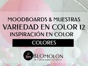 Variedad Color MoodBoards Muestras