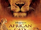 Disney nature: felinos africa.