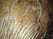 búho simbología zoomórfica