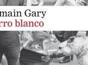 racismo USA. Romain Gary. Perro blanco