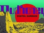 Mudhoney Kill yourself live