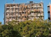 Rehabilitación jardín vertical Vicente Raspeig