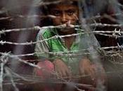 consiste Pacto Mundial sobre Refugiados?