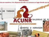 Materiales construcción para nuevo albergue ACNUR