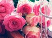 compras belleza infusión rosas nueva mejor amiga piel