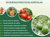 Diplomado Manejo Responsable Agroprotectores