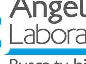 Laboratorio Angel Valle Cauca Sedes