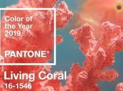 Living Coral, Color Pantone 2019