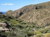 Minas hierro Rincón Morales, unas viejas minas plomo camino.