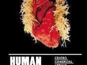 corazón mano: Bodies Exhibition