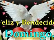 Feliz Bendecido Domingo